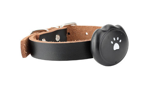 2G SIM Waterproof GPS Tracking Collar Android IOS Compatible For Pet Dog / Cat